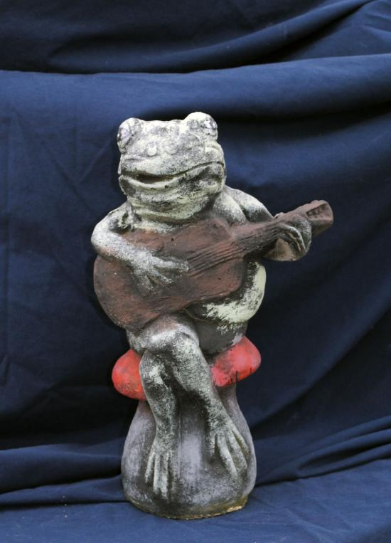 frog with guitar 14